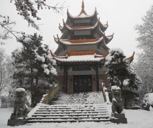 2010年省植物园雪景