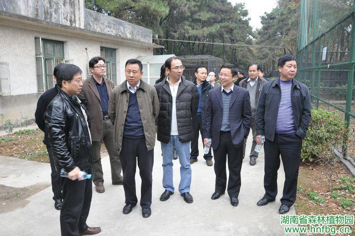 国家林业局保护司刘亚文副司长一行到我园调研珍稀