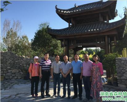 湖南参展第九届中国花卉博览会 筹备工作进展顺利